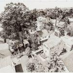 Drone-10-150x150 by Jessica Rohrer